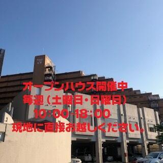 ライオンズマンション金剛13階